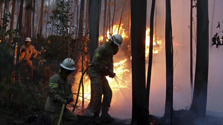 Al menos 62 muertos por incendios forestales en Portugal
