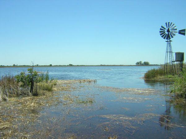 Bauer y Sigel - Inundaciones